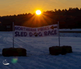 2021 Northern Pines Sled Dog Race in Iron River, WI
